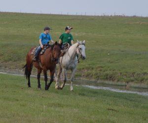 DSC_0668 Ash & Cam & horses